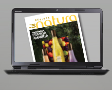 Revista digital ciclo 02